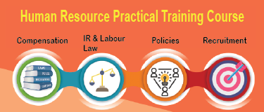 HR Practical Course+Free SAP HCM/HR