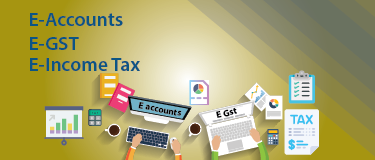 E-Accounting E-GST+Free SAP FICO