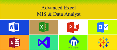 MIS & Data Analyst+Free SAS Base+Adv.