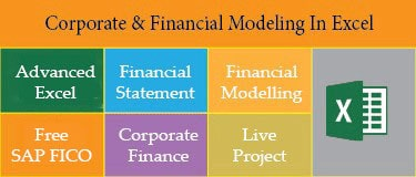 Financial Modelling Training+Free SAP